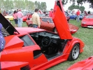 Door up on this Countach